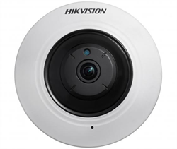 Fisheye IP-камера Hikvision DS-2CD2935FWD-I(1.16mm) - фото 13929